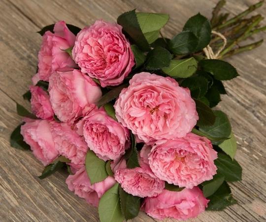 """Букет роз от Дэвида Остина """"Майра Роуз"""" - фото 1"""