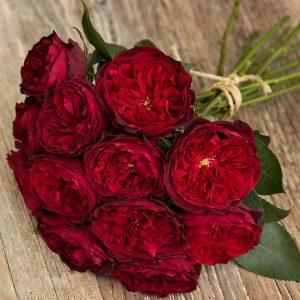 """Букет роз от Дэвида Остина """"Тесс"""" - фото 1"""
