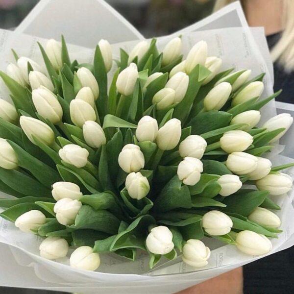 """Букет тюльпанов """"Свежесть весны"""" (49) - фото 1"""