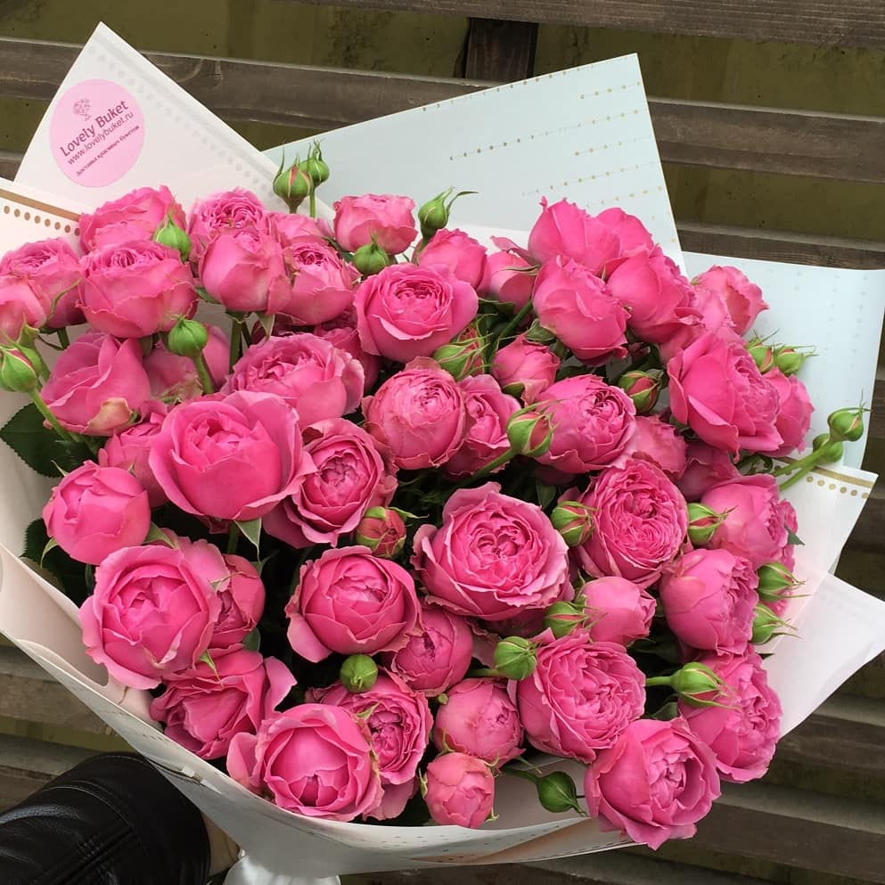 Букет Малиново-лиловые пионовидные розы, изображение 1