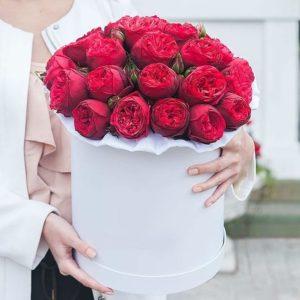 Букет английских красных пионовидных роз в коробке - фото 1