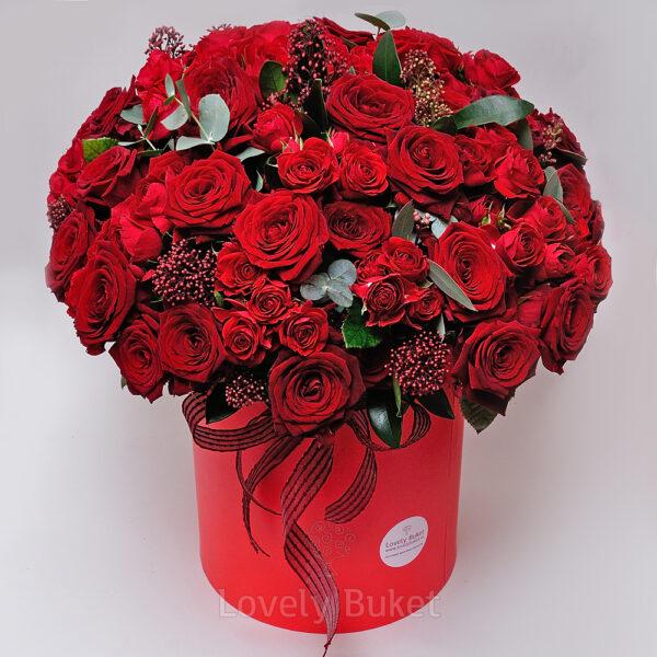 Букет из 81 розы в красно-рубиновой гамме со скиммией - фото 1