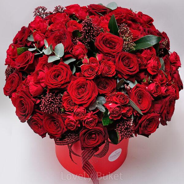 Букет из 81 розы в красно-рубиновой гамме со скиммией - фото 3