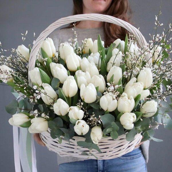 Корзина белых тюльпанов с ароматной генистой (51) - фото 1