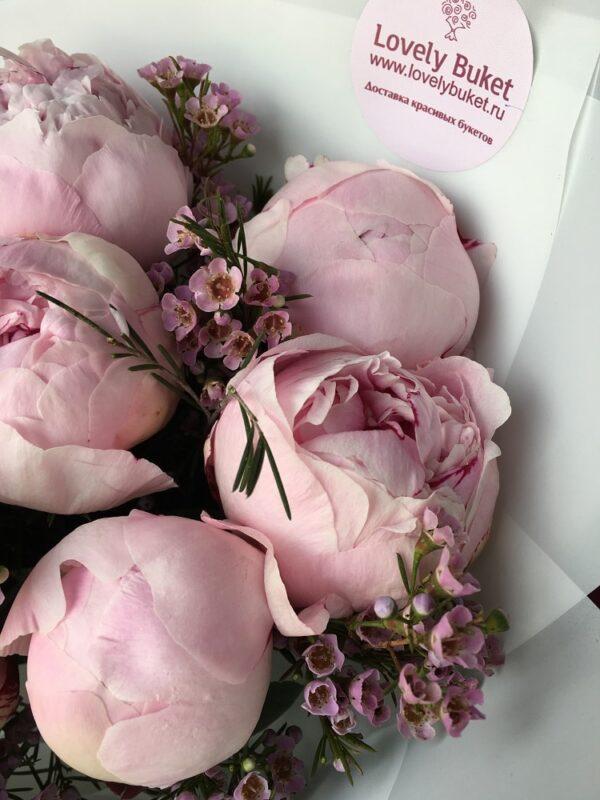 Розовые пионы и ароматный хамелациум - фото 2