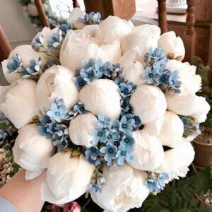 Белые пионы и голубой оксипеталум - фото 1