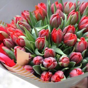 """Красные тюльпаны """"Extra"""" - фото 1"""