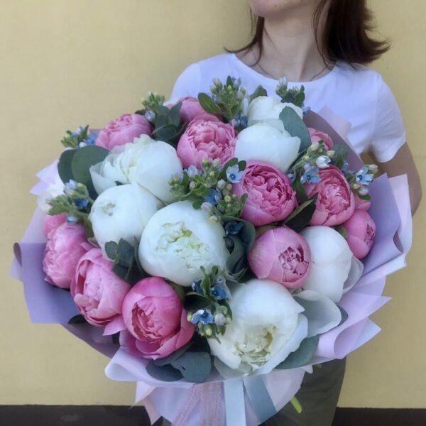 Букет из белых и нежно розовых пионов с голубым оксипеталумом - фото 2