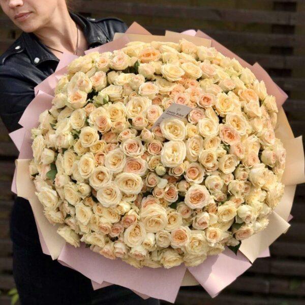 Кустовая роза медового и абрикосового оттенка «Honey» - фото 1