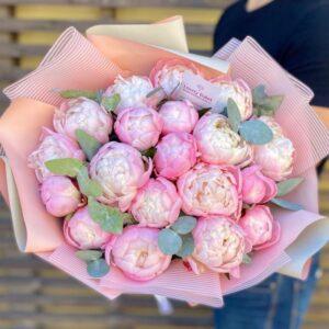 Пионы сорта Gardenia - фото 1