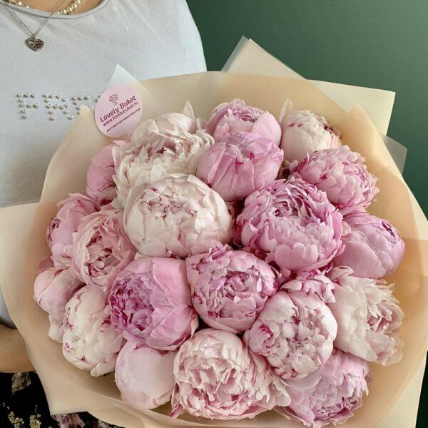 ХИТ! 21 голландский розовый пион - фото 1