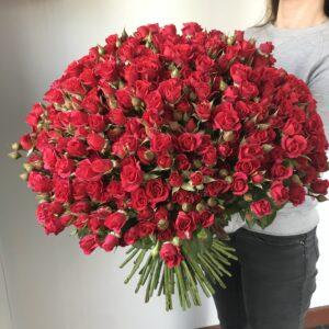 Букет из красной кустовой розы - фото 1